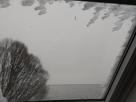 Paisajes sonoros de un día de nieve - Paisatges sonors d'un dia de neu