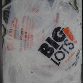 BIGLOTS! (detail)