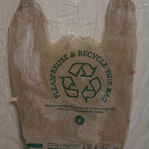 pleaserecyclethisbag (detail)