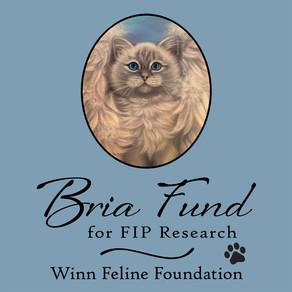 Bria Fund's Mission