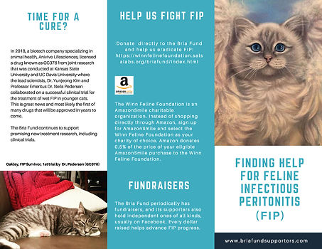11-2-19 Bria Fund Support Brochure Web V