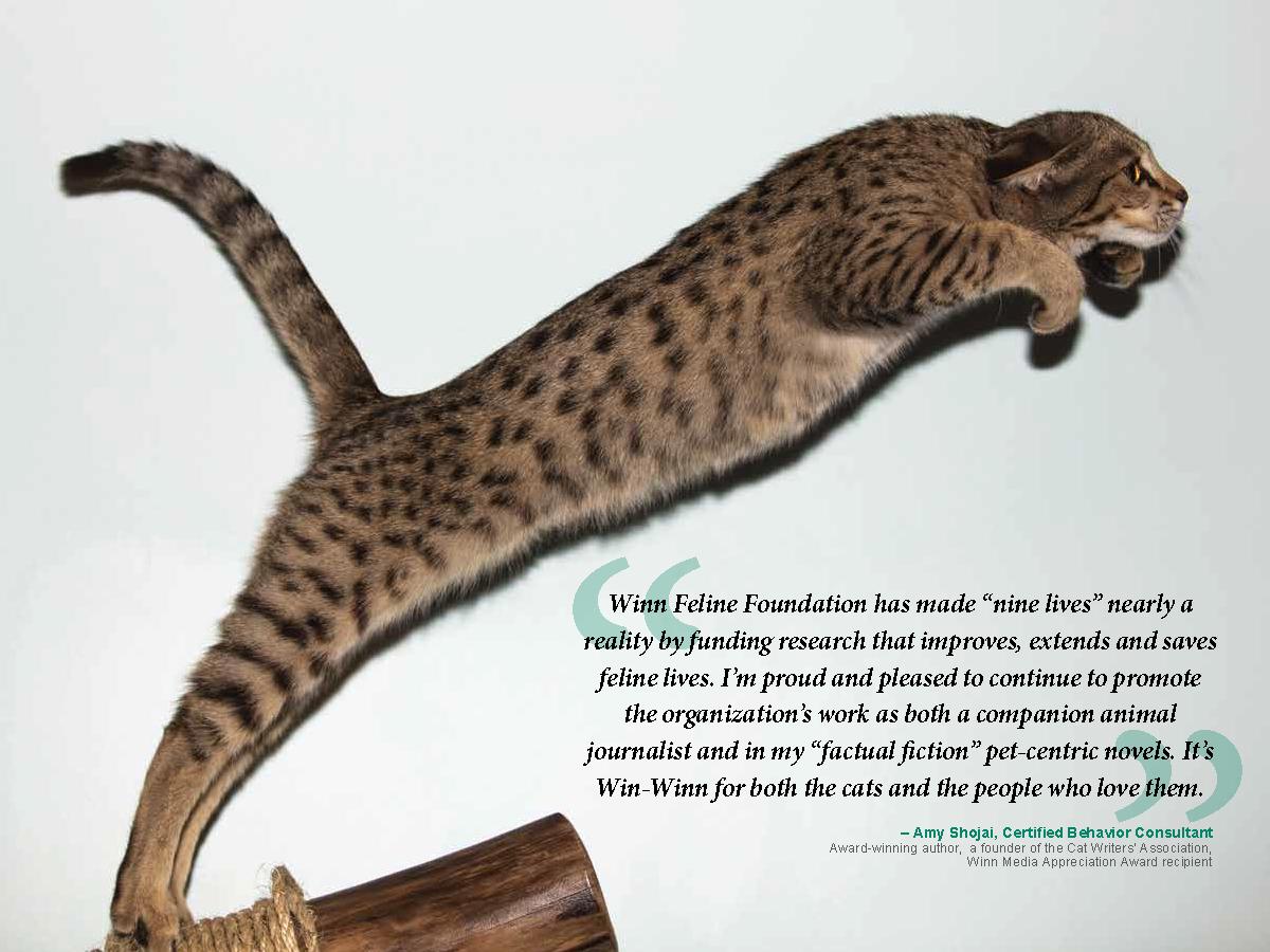 Bria Fund - page 3