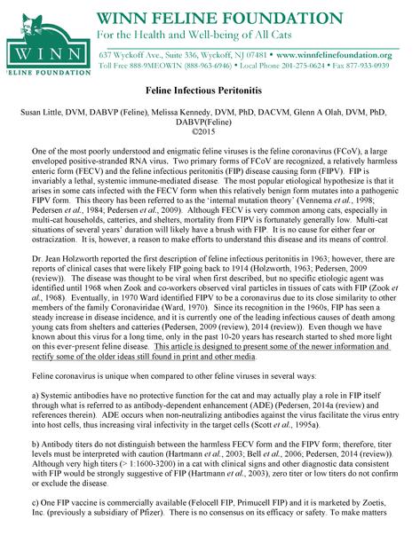 Winn FIP Report - Pg 1