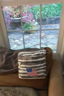 Susan's purse & backyard 10-1-18.jpg