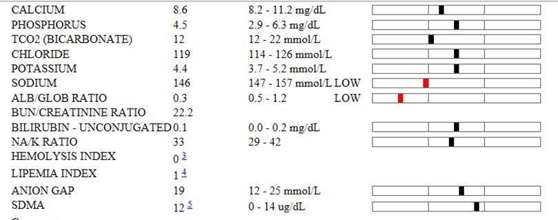 Anna-Lena Berg Diagnostic Tests for FIP 4.jpg