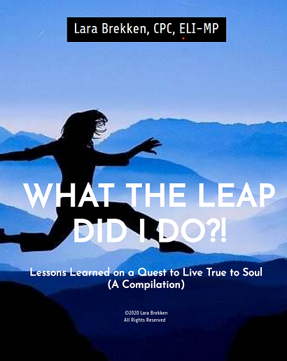 Cover_What the Leap Did I Do.png