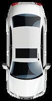 car data echoes multi brand