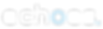 logo echoes collect data car harmonize neutral server