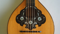 Thuringer Waldzither