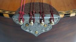 Nylon Strings Mandolin