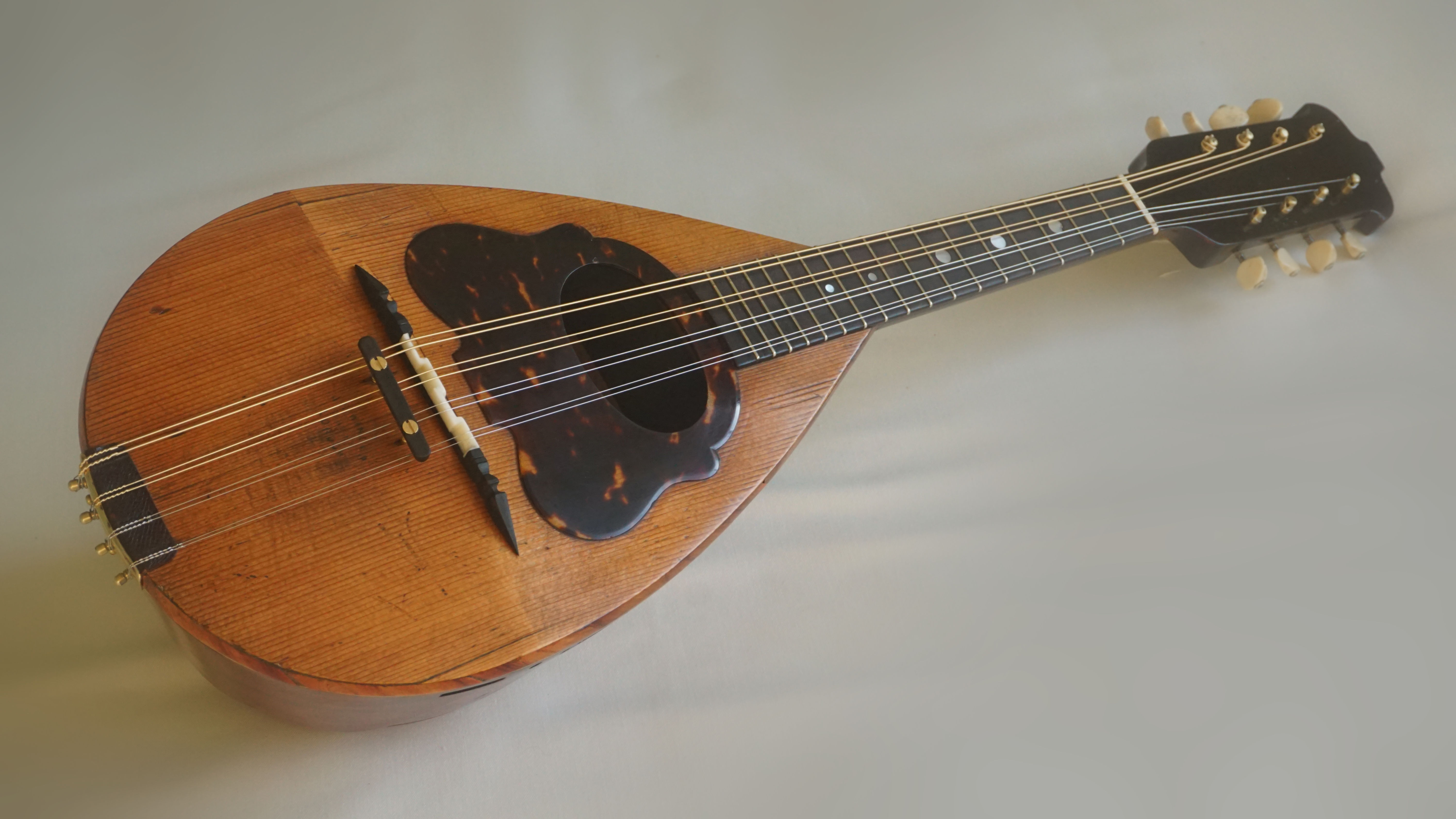 Winder Mandolin