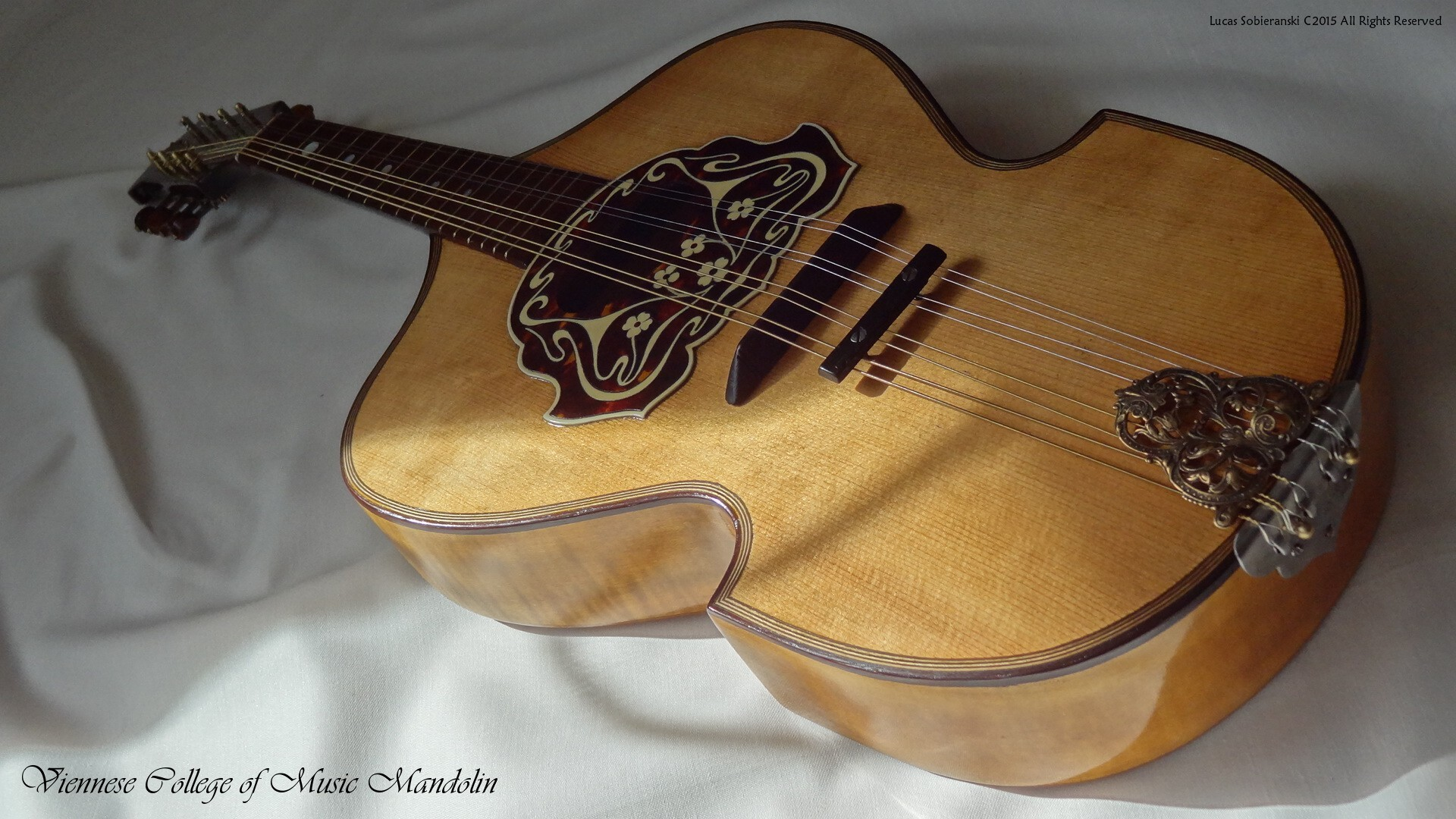 Viennese College of Music Mandolin