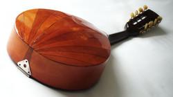 Dome backed Mandolin
