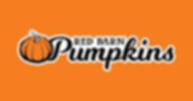 OrangePumpkinLogo.jpg