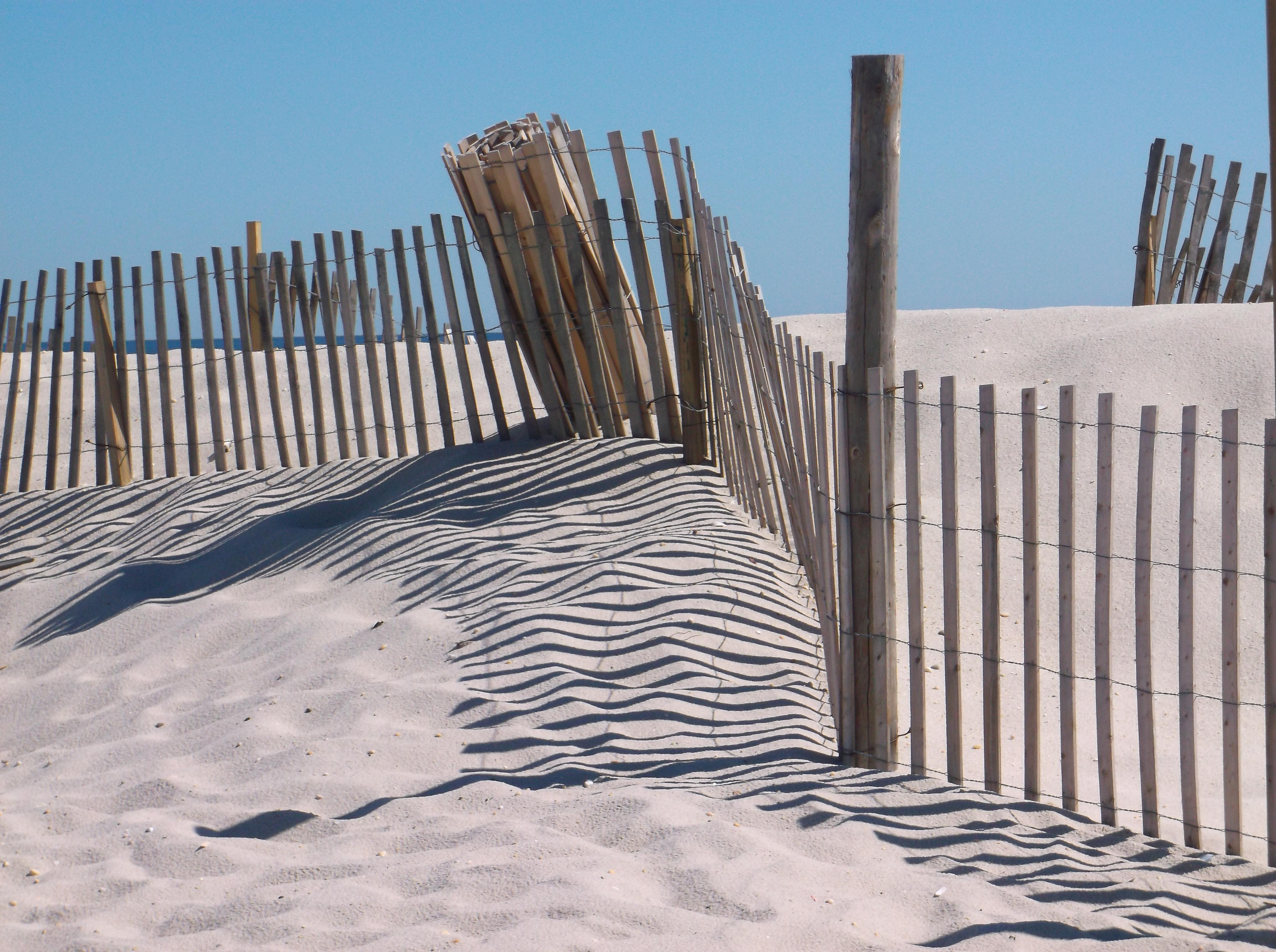 Seaside Dunes - Linda OsieckiDSCF0559
