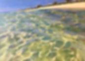 Caribbean Reflections.jpg