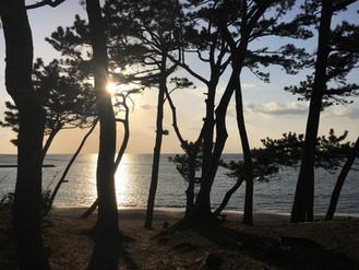 Paint Out Japan 葉山一色海岸