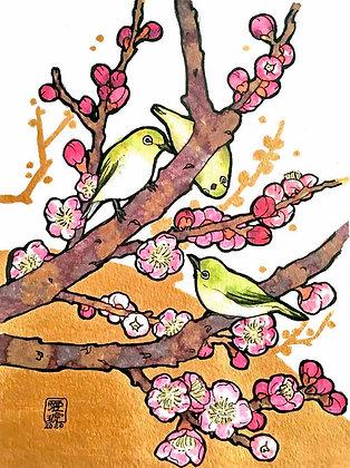 春によろこぶ -  森木愛琥