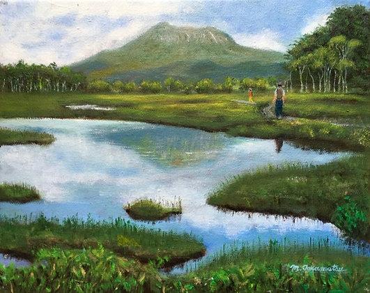 尾瀬の池塘 - 高松典雄