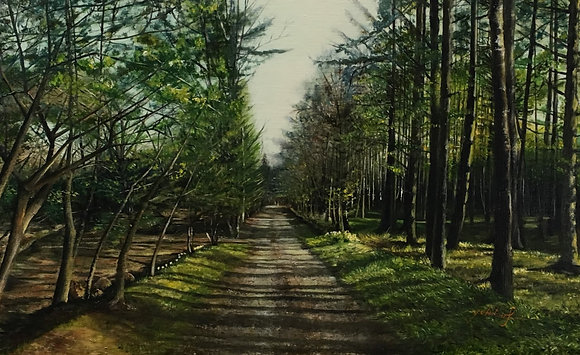 早春の道 藤森有規子