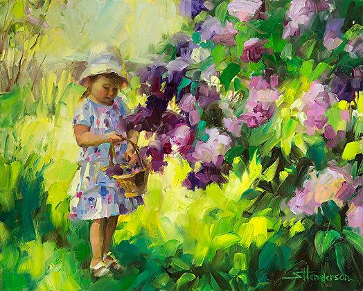 Lilac Festival by Steve Henderson