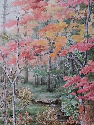 森の秋 -    杉本真喜子