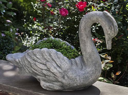 Newport Swan