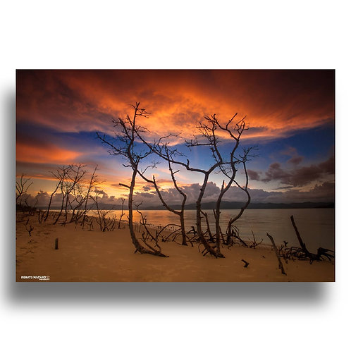 Impressão Fine Art ( Cod: IMG_5517 ) - Por do Sol em Florianópolis