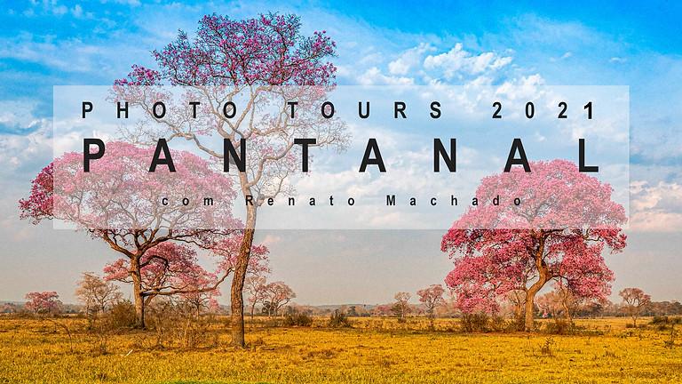 PANTANAL  PHOTOTOUR - Setembro / 2021