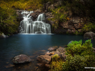 Retorno ao Parque Nacional de Itatiaia