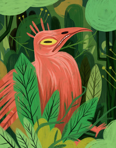 Bird in the Forest