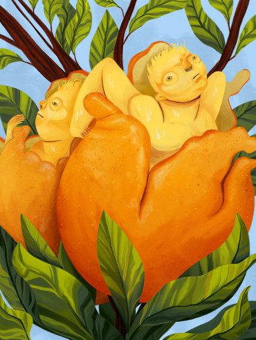Citrus Siblings