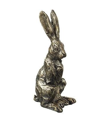 Sitting Hares.