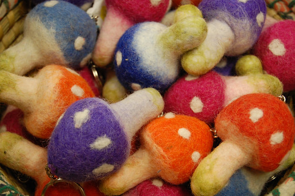 Kaboodle's Charity Toadstool Keyrings.