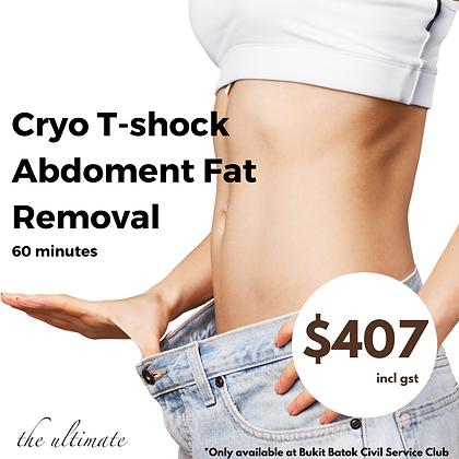 Cryo T-shock abdoment fat removal