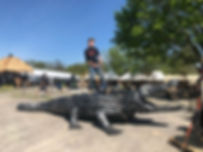 Giant Robot Crocodile Port Hope Tourist Attraction Must See
