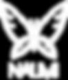 NAUMI-логотип