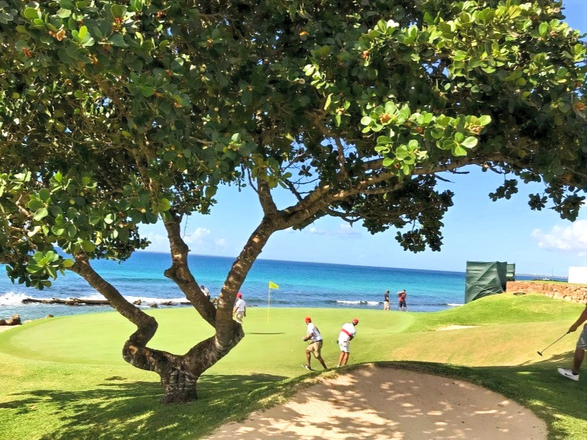 Golf green, beautiful views, the Caribbean, trees, golfers, sand bunkers and Casa de Campo.