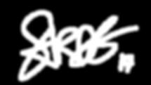 signature  WHITE .png