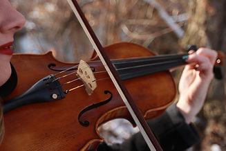 violin 9.jpg