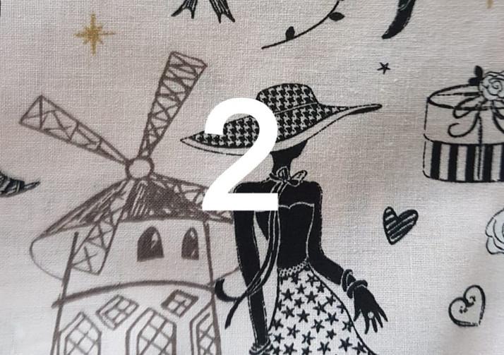 2. Tissu petite Parisienne