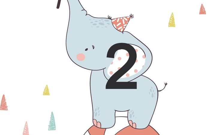 2. Elephant