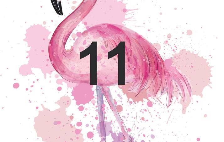 11.Flamant rose