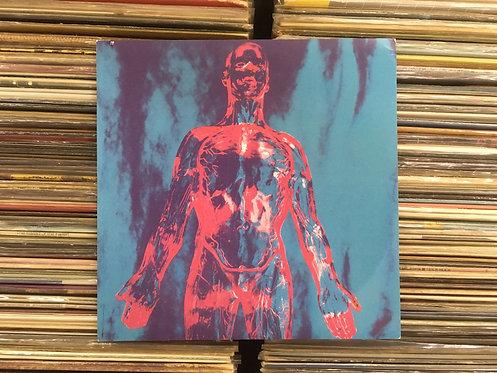 Compacto Nirvana - Sliver / Dive - Importado