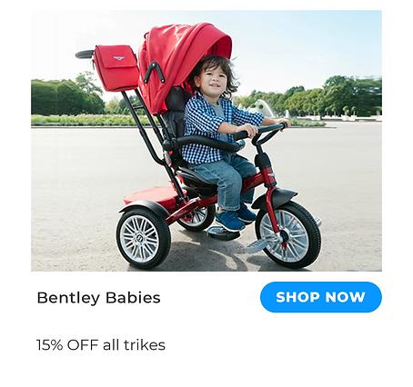 bentley-babies.png