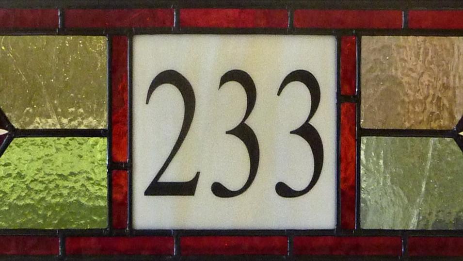 FAN 233.jpg