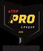 PRO League-ATRP-2020-02.png