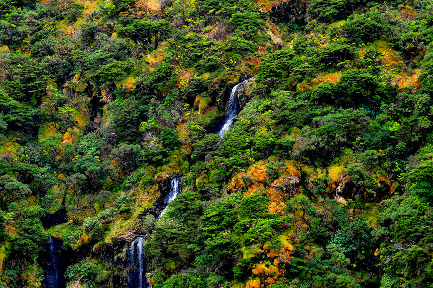 Ilha das Flores, Azores