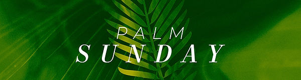 Palm Sunday Banner.jpg