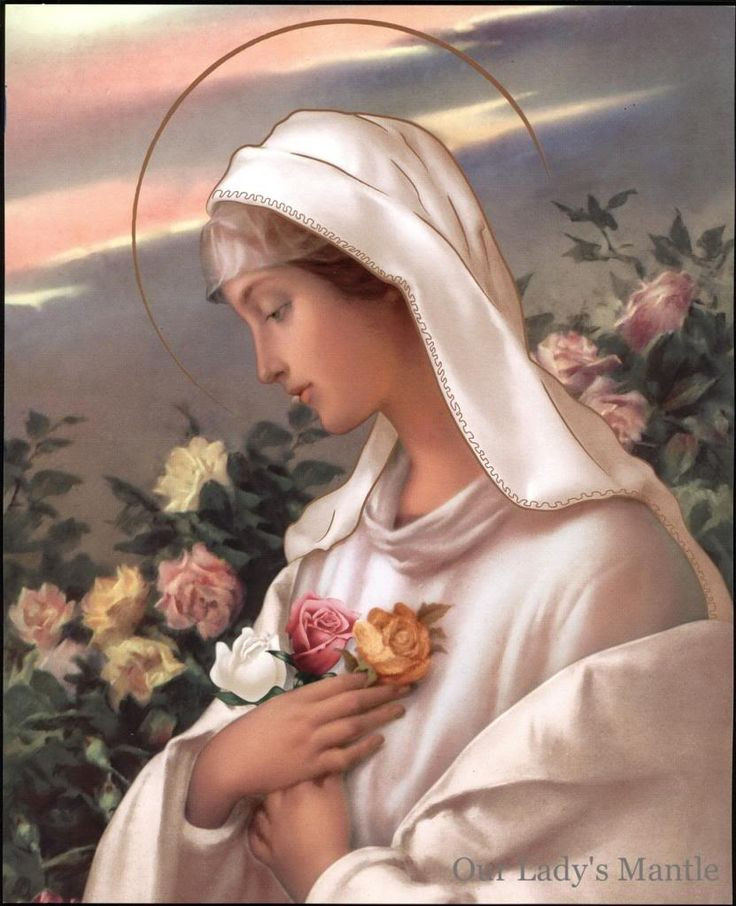 Our Lady of the Rose.jpg
